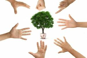 Green issues still a core business concern for managers