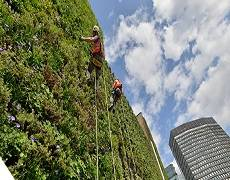 London's living wall designed to reduce flood risk and improve air quality