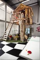 Tree House at Missing Link