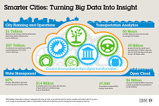 Infographic  Smarter Cities. Turning Big Data into Insight