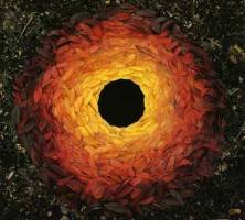 pattern psychology - andy goldsworthy