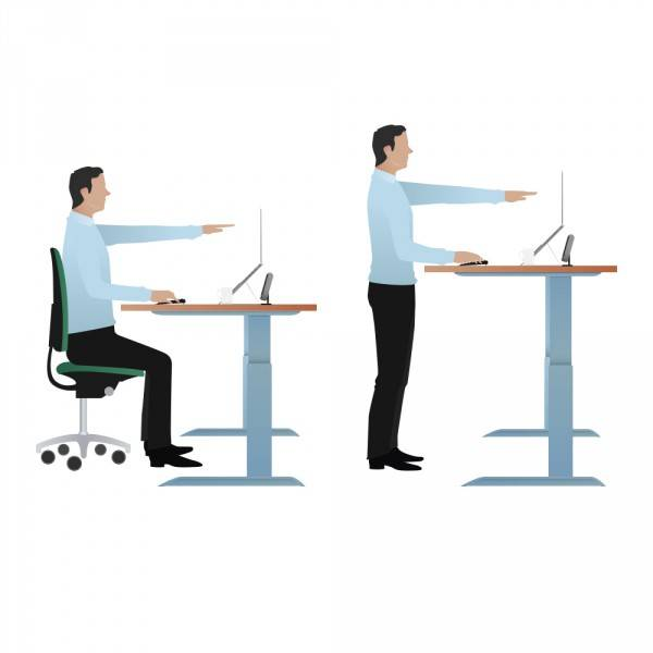 Management is needed to ensure people actually use sit stand workstations