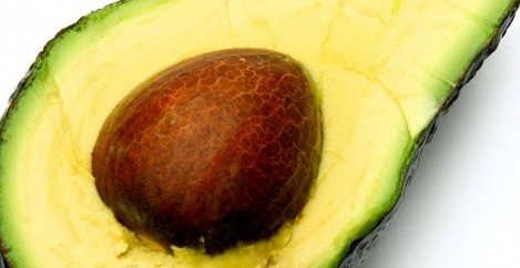 What the humble avocado can teach us about why we will always work in offices