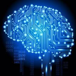La neurociencia puede funcionar como una herramienta de gestión de personal ... - lugar de Trabajo Insight (comunicado de prensa) (registro) (blog) 1