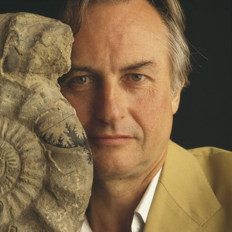 What Richard Dawkins can teach us about ergonomics and the value of pain