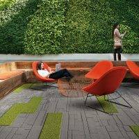 How to measure the impact of biophilia on individual performance