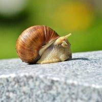 Progress on gender equality at work moving at a snail's pace, report claims