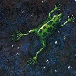 An illustration of a frog, a key metaphor in Charles Handy's writing about the world of work