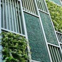 Green Building Council sets out to define net zero carbon building