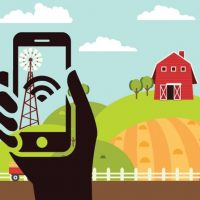 Rural innovation policies need to reflect differences within communities