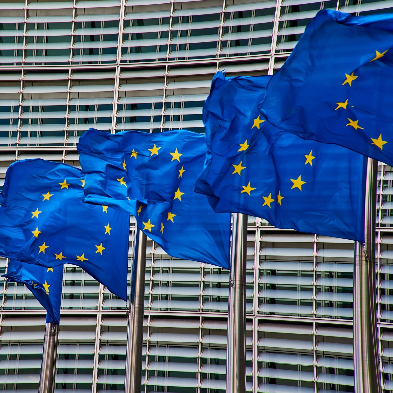 EU membership can hamper local businesses