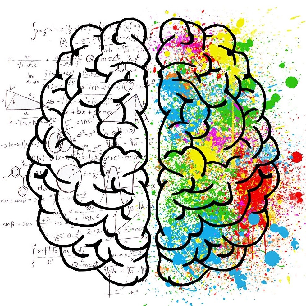 Businesses favour the commercial brain over the creative one, study claims
