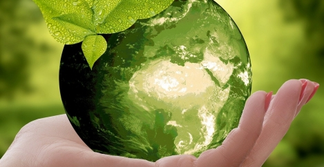 Future of the workplace: Sustainability, climate change and COVID-19