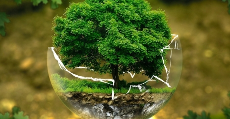 Businesses prioritise environmental impact in post-COVID-19 strategies